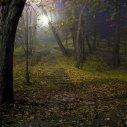 Jesień w Parku Rydzego-Śmigła